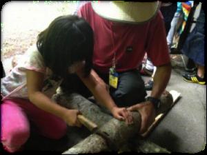 木を切る体験